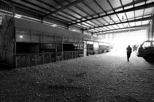 4月7日,诸暨市农贸批发市场家禽批发摊位门庭冷落新华社发