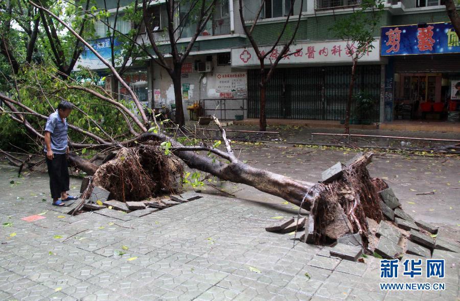 台风天兔图片_超强台风天兔今晚将登陆广东沿海