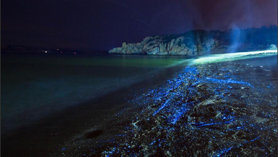 27日晚上10点多,他和朋友来到平潭的坛南湾沙滩拍摄星空,没想到却遇上图片