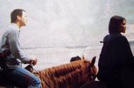 与窦唯骑马共游野三坡
