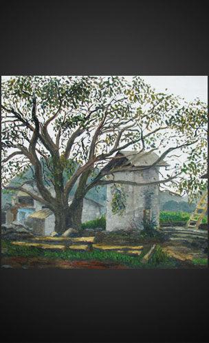 美丽童行拍品:圭山的核桃树