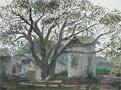 圭山的核桃树