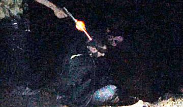 叙利亚极端组织枪决14名人质画面