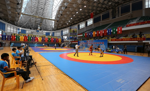 2015年男子相扑自由式摔跤冠军赛东京开赛陵水日本全国v男子图片