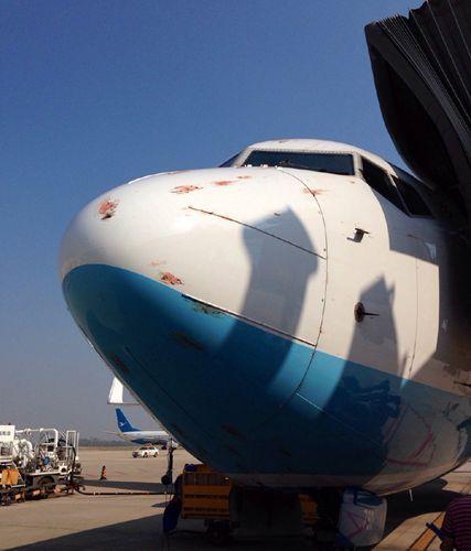 厦航一航班在武汉机场降落时遭遇鸟击 机身血迹斑斑