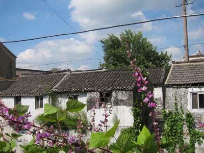 以青砖小瓦木结构飞檐翘脊为主要特征的民间传统建筑
