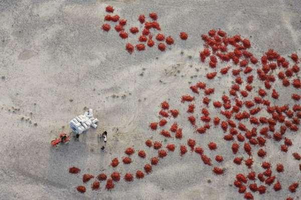 """摄影师用滑翔伞航拍世界""""极致""""沙漠奇景"""