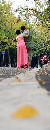 青岛八大关雨后秋意浓