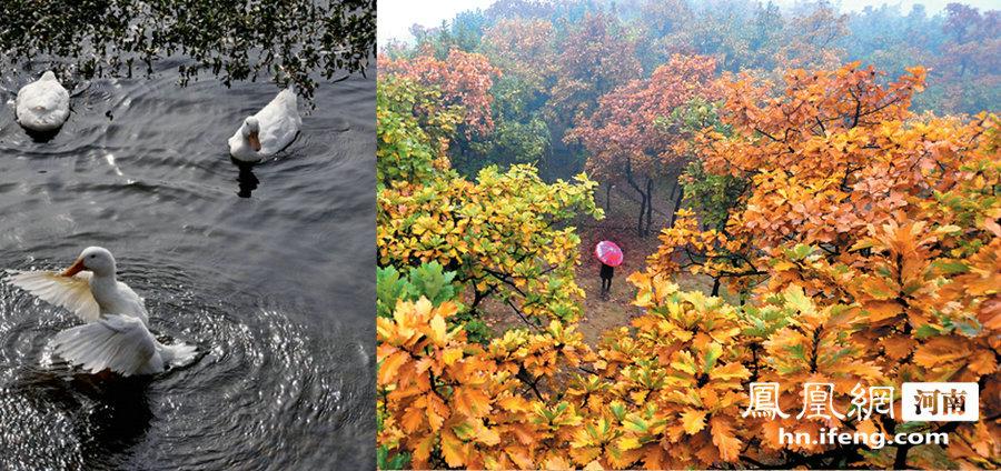 河南襄城紫云山风景区——紫云笼罩