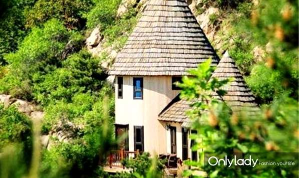 云峰山景区里有一个盖在树上的童话树屋酒店,酒店建在薰衣草园旁的一片森林里,每栋房子都盖在高高的树上,都有自己的童话名字,爱丽丝,青蛙王子,匹诺曹,仙杜拉城堡......这里就像是宫崎骏的动画片,充满了童话色彩,身处在树屋,身心完全放松下来,带着宝贝们来这里感受童话,爬爬山,在树屋里发呆,看美景,吃素食,说是仙境也不为过啊。