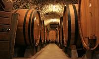烟台威龙葡萄酒公司
