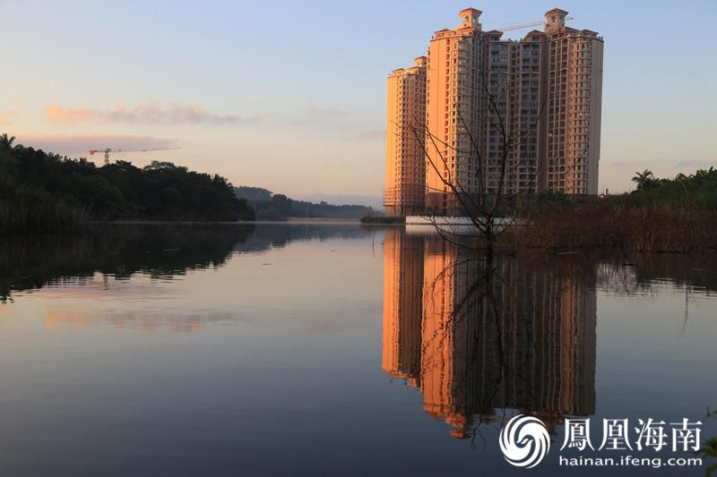 【发现海南之美】高清图集:琼中晨光有多美 白鹭湖上白鹭飞