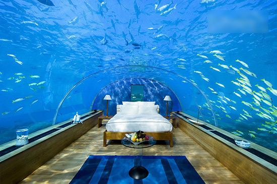壁纸 海底 海底世界 海洋馆 水族馆 桌面 550_366