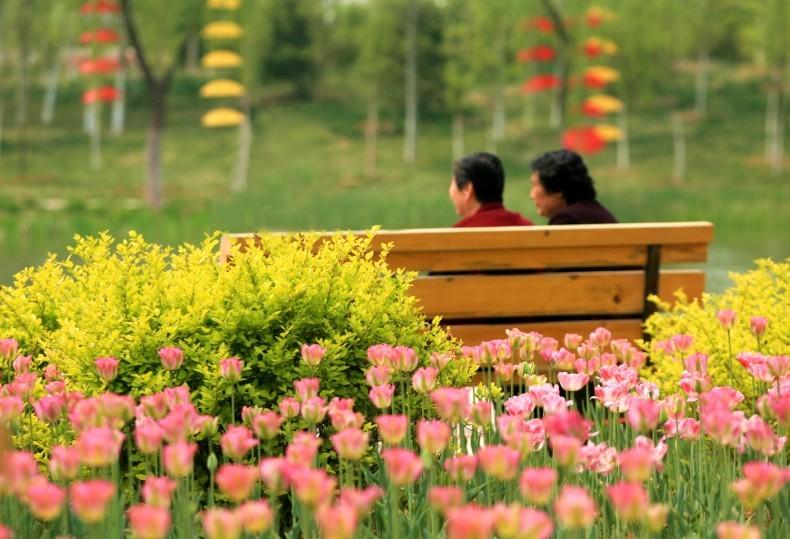 济南植物园 山东省最大的植物主题公园