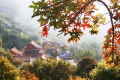 寒同山获评第二批省级原生态旅游景区