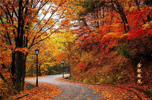 秋游丹东凤凰山 红叶美景和温泉图片