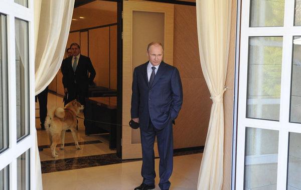 """日本首相安倍晋三8日在举行冬奥会的索契拜会俄罗斯总统普京,商讨北方四岛主权争端等话题。普京带着宠物狗Yume会见安倍,安倍向Yume微笑示好。Yume是日本在2012年7月送给普京的礼物,是一只秋田犬,名字意思是""""梦"""",送的时候3个月大,现在已快两岁。普京在迎接安倍时专门带上它同安倍重会。俄罗斯媒体报道,见到Yume后,安倍用俄语说了一句""""好狗"""",普京回答说:""""但它有时候也咬人。"""""""