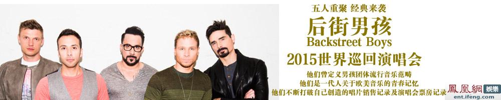 后街男孩2015世界巡回演唱会