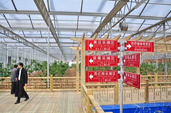 城阳打造首家热带观赏园 南国植物现青岛(图)