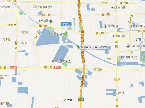 东营人游黄河三角洲动物园