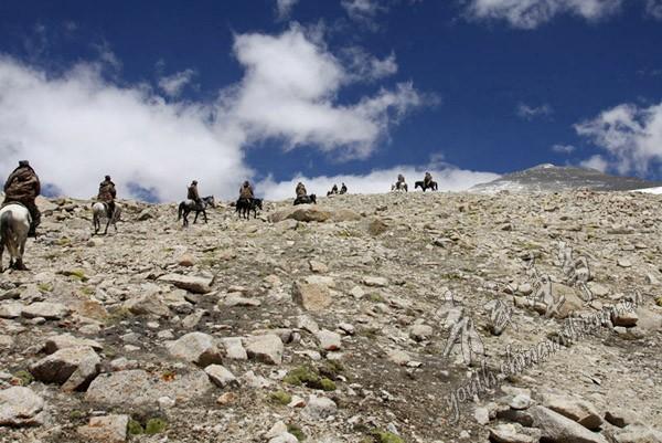 藏北斯潘古尔哨所铁兵:几公里雷场驴羚骸骨累累