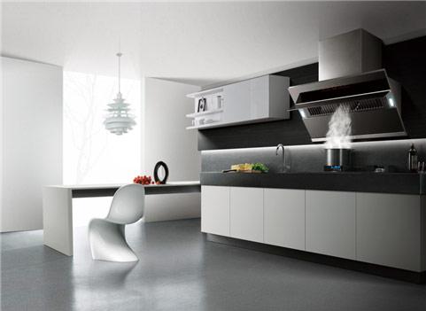 2019年厨房电器排行榜_厨房电器加盟排行榜 2019年厨房电器加盟店十大品