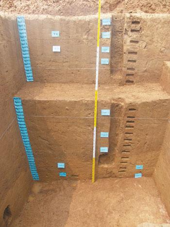 天津人文史提前至距今4万年以前1