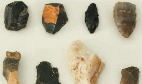 天津人文史提前至距今4万年以前3