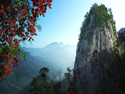 观风景秀丽的山阳县天竺山国家森林公园