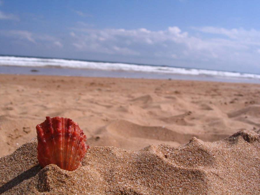 烟台金沙滩海水浴场
