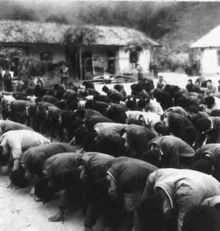 在1978年冬到1979年春,云南的西双版纳发生了一场五万知青罢工请愿大返城的事件。图:云南五万知青罢工下跪、请愿,要回家!(图片来源:凤凰网历史)