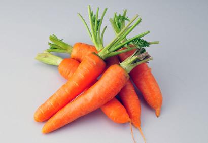 红萝卜动物图案大全