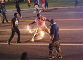 美国弗格森镇爆发骚乱