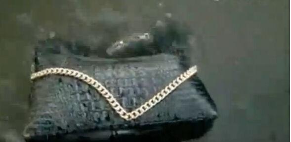 恐怖的巨鳄吞美女多图