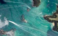 卫星照疑现巨型海怪长12米游速快过鲸鱼
