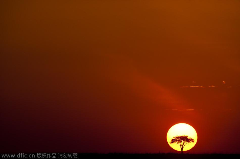 新年 第一缕阳光 绝美日出 - 鑫土的博客 - 鑫土的博客