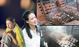 娱乐圈明星地震避难指南