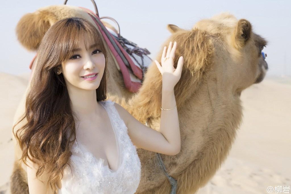 柳岩沙漠晒与骆驼合影 优雅白裙显女神范儿