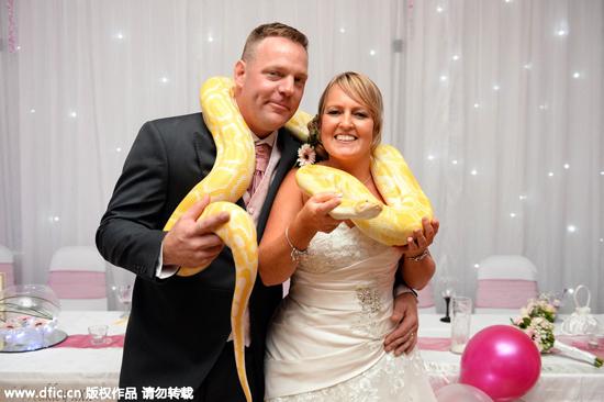 """夫妻订婚10年才典礼:30位""""动物客人""""齐出席"""