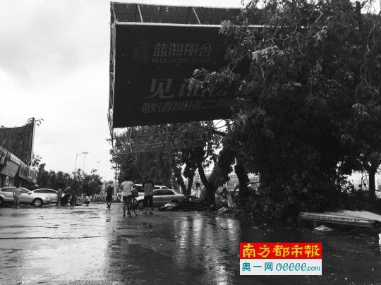 湛江市区人民大道一巨型广告牌被台风刮倒.