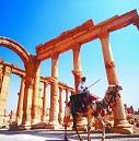 消逝的叙利亚瑰宝