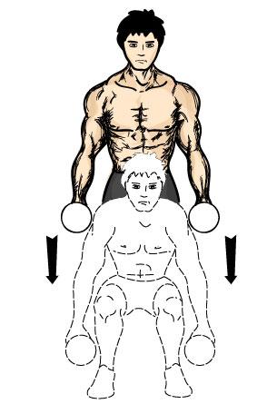哑铃深蹲:动作要领:双手握哑铃放在肩上或垂在体侧