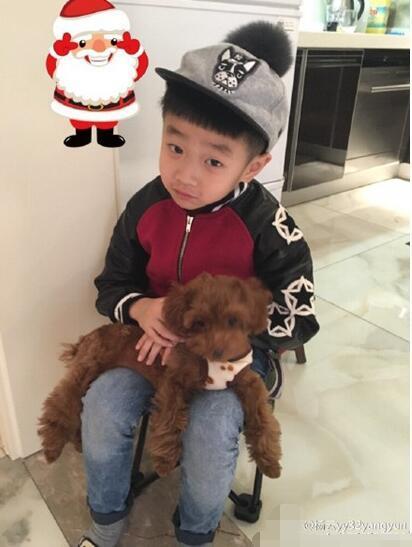 """[明星爆料]杨云晒儿子萌照 杨阳洋""""戴""""圣诞帽抱小狗(图)"""