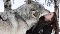 实拍大灰狼与美女玩雪 全程和谐萌趣