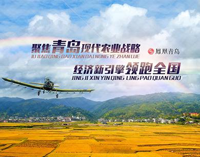 聚焦青岛现代农业战略 经济新引擎领跑全国