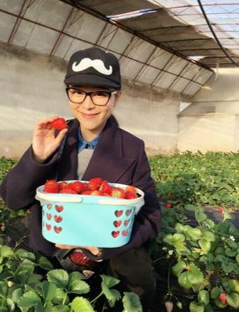 [明星爆料]张静初采摘草莓收获满满 网友:我也想吃(图)