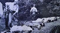 除南京外一场被遗忘的大屠杀:10万华人丧命