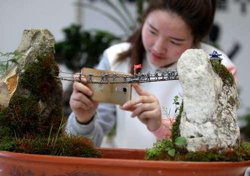 南通大学生设计微景观