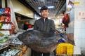 青岛渔民渤海湾捕获重100余斤巨型怪鱼