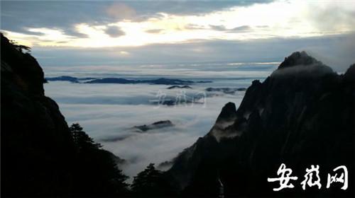 11月25日,黄山风景区出现壮观的日出云海奇观.李金刚拍摄